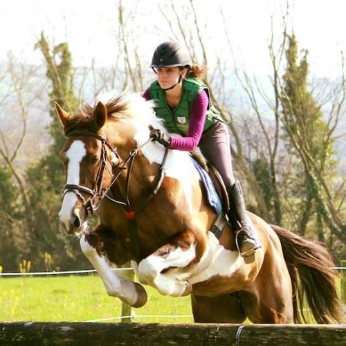 Crossogue Equestrian riding camps